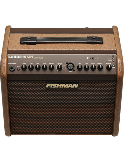 Fishman Loudbox Mini Charge angle