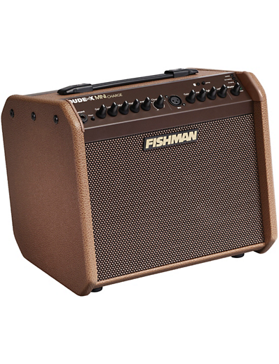 Fishman Loudbox Mini Charge side angle